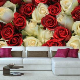 Fototapete, Trandafiri roșii și albi