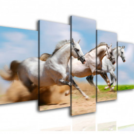 Multicanvas, Trei cai albi.