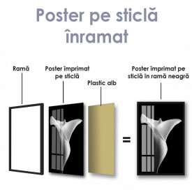 Poster, Crin alb pe fundal negru