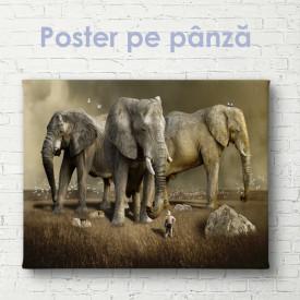 Poster, Elefanți uriași