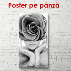 Poster, Fată cu trandafir