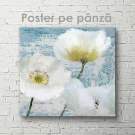 Poster, Flori albe pictate