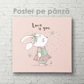 Poster, Iepuraș