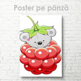 Poster, Koala în zmeură