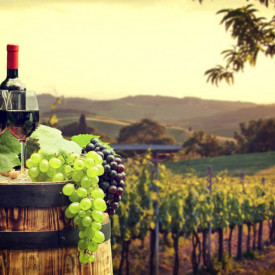 Poster, Sticlă de vin pe fundalul unei podgorii verzi la apusul soarelui