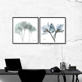 SET, Flori abstracte
