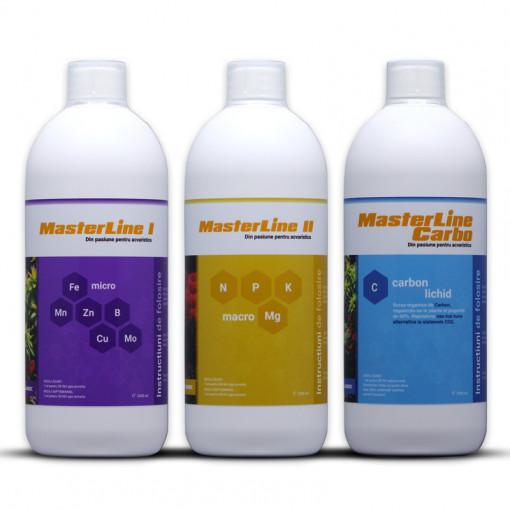 Fertilizant complet Masterline 3x1000 ml