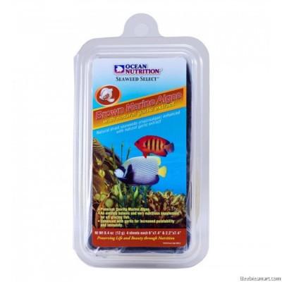 Hrana uscata Brown Seaweed 12g