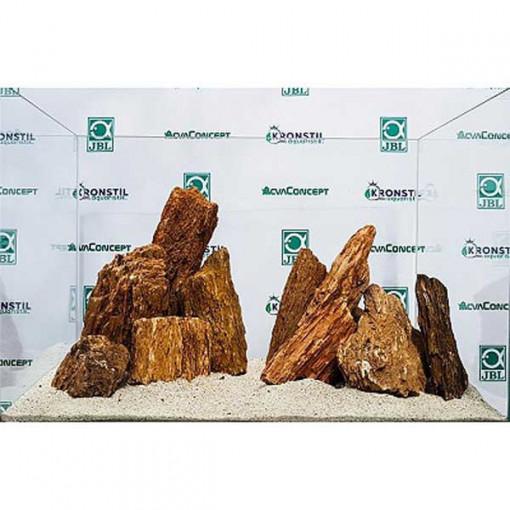 Piatra decor acvariu Myanmar Wood pret/kg