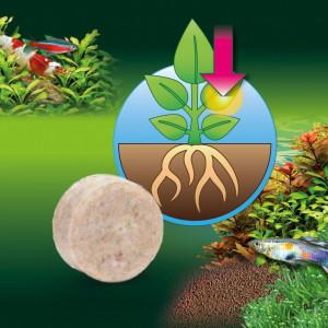 Fertilizant plante acvariu JBL Ferrotabs 30 tabl. Pentru 750 l