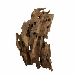 Radacina Dragon Wood / pret kg