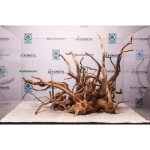 Radacina Red moor wood/pret pe kg - AQUADECO