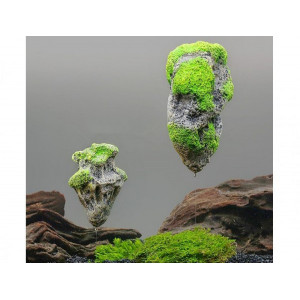 Roca acvariu flotanta pentru acvariu marime S- A8011472