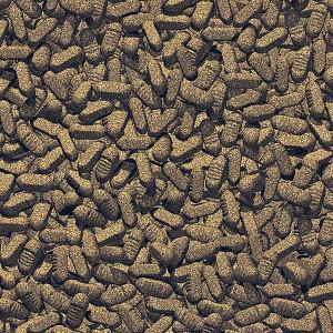 Hrana poesti iaz JBL ProPond Silkworms M 1 kg