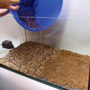 Fertilizant plante acvariu JBL AquaBasis plus 2,5l