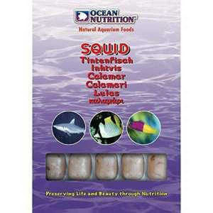 Hrana congelata Ocean Nutrition Squid 100g