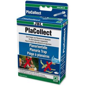 Capcana Planaria Jbl PlaCollect