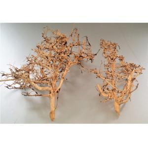 Radacina decor acvariu Thailand Tree wood pret/kg