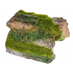 Decor acvariu scoarta lemn copac cu moss 10 cm