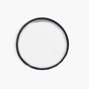 Garnitura pentru osmozor JBL O-Ring for housing Osmosis (2pcs)
