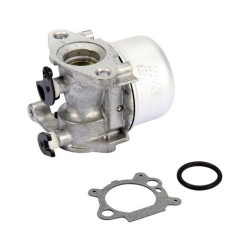 Carburator Briggs&Stratton 799866, 794304