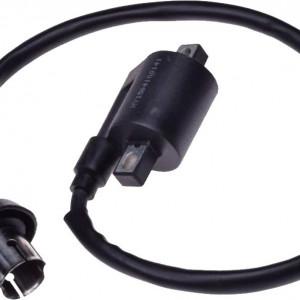 Bobina inductie ATV 250 STXE - Wilmat