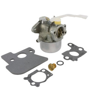Carburator Briggs&Stratton 694203