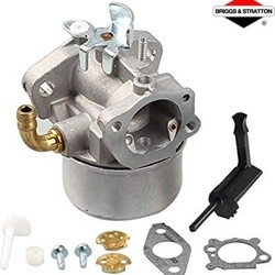 Carburator Briggs&Stratton 798653
