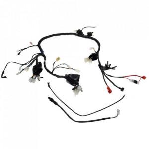 Instalatie electrica ATV 250 STXE - Wilmat