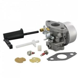 Carburator Briggs&Stratton 798653