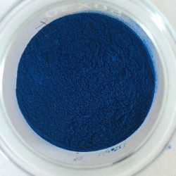 Blue food coloring, powder, Brilliant Blue FCF E133 - plastic container 1 kg