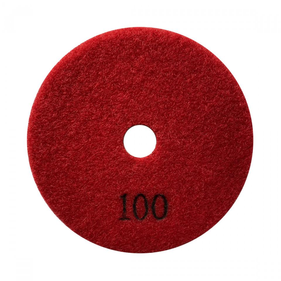 Paduri / dischete diamantate pt. slefuire uscata #100 Ø100mm - DXDY.DRYPAD.100.0100 imagine 2021