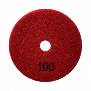 Paduri / dischete diamantate pt. slefuire uscata #100 Ø100mm - DXDY.DRYPAD.100.0100