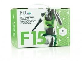 F 15 за начинаещи изображения