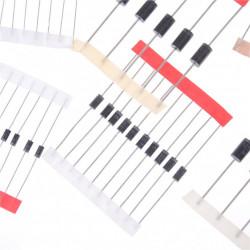 Set dioda-100 komada