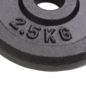 Plăci de greutate, 8 buc., 8x2,5 kg, fontă