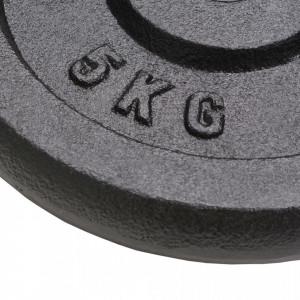 Plăci de greutate, 4 buc., 4x5 kg, fontă