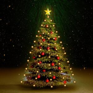 Instalație brad Crăciun, 210 leduri, interior/exterior, 210 cm