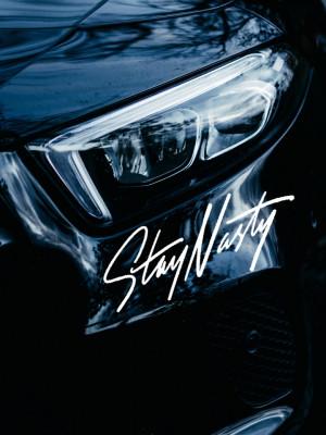 Sticker auto Stay Nasty