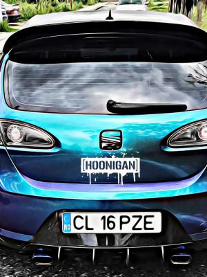 Sticker Auto Hoonigan
