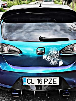 Sticker Auto Cagula