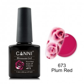 Poze Oja Semipermanenta CANNI  Blassom 673 Plum Red