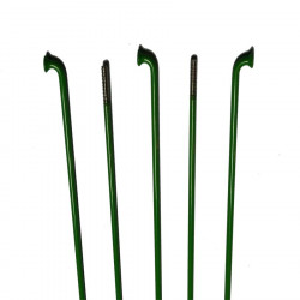 Spita Inox 2 mm cnSPOKE Verde(de la 250-260 mm)