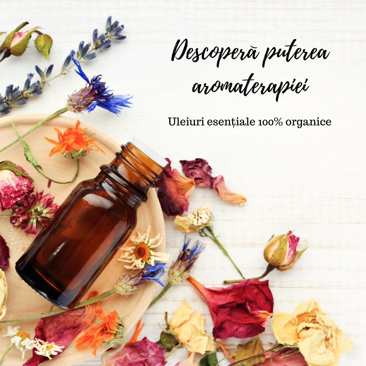 Suplimente vitamine capusle vegane Raab natural oganic