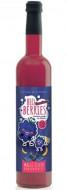 Elixir Magic Pentru Copii, Concentrat Cu Mure Bio, 500Ml, Retter