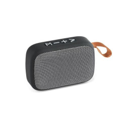 GANTE. Speaker with microphone