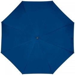 Automatic pocket umbrella with carabiner handle
