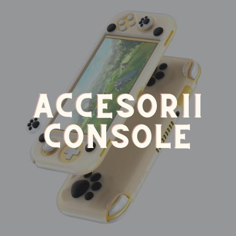 Accesorii console