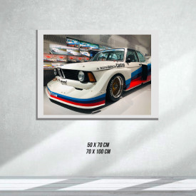 BMW Racing Car (Tablouri Canvas)