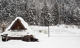 Tablouri Iarna